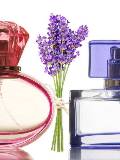 essential-oils-bottles-lavender-Modewest
